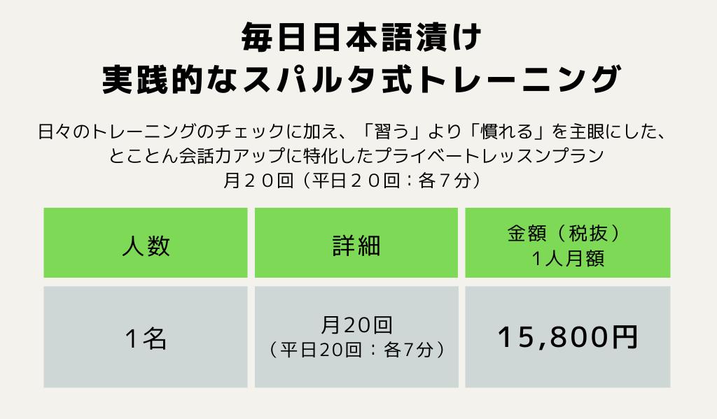 毎日日本語漬け実践的なスパルタ式トレーニング1名月20回15800円